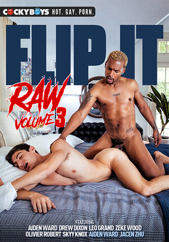 Flip It Raw 3